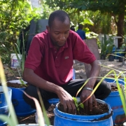 Compost Climate Connections Webinar Series: 