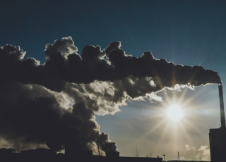 Anti-Incineration Movement Experiences Setbacks in Australia and Baltimore